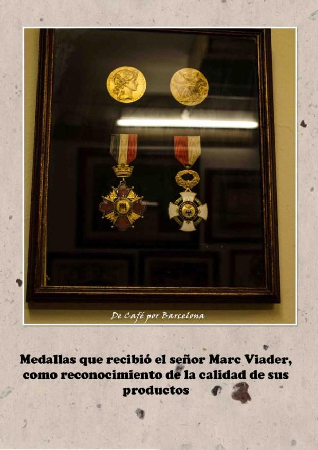 Granja Viader17